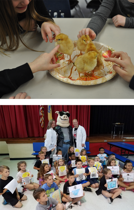 "(Top) Starting in kindergarten, students learn about the life cycle of a chicken by observing a classroom incubation chamber for eggs, and the students look forward to holding the chicks once hatched. (Above) Switlik students get a visit from the ""Energy Hog,""' part of a New Jersey Natural Gas campaign launched by the Alliance to Save Energy and the Ad Council. The Energy Hog makes learning about energy fun, while empowering children to make wise energy choices. (Note: Photos supplied by school, taken prior to COVID distancing guidelines)."